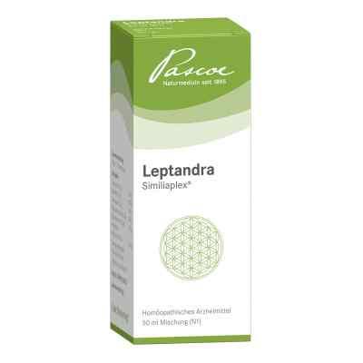 Leptandra Similiaplex  bei apo-discounter.de bestellen