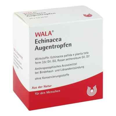 Echinacea Augentropfen  bei apo-discounter.de bestellen