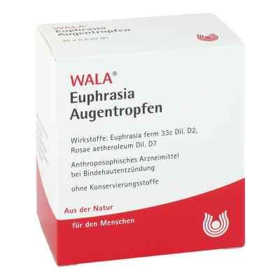 Euphrasia Augentropfen  bei bioapotheke.de bestellen