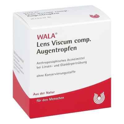 Lens Viscum compositus  Augentropfen