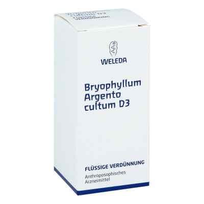 Bryophyllum Argento Cultum Dilution D3  bei apo-discounter.de bestellen