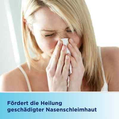 Bepanthen Augen- und Nasensalbe  bei apo-discounter.de bestellen