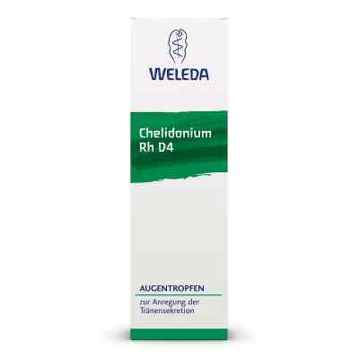 Chelidonium Augentropfen Rh D 4  bei apo-discounter.de bestellen