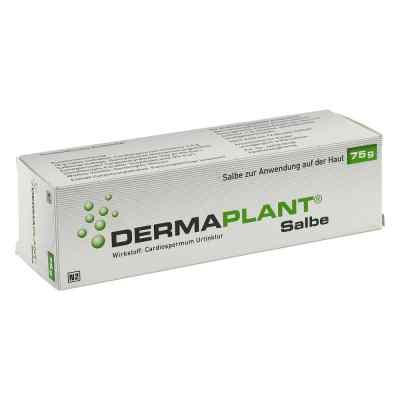 Dermaplant Salbe  bei apo-discounter.de bestellen