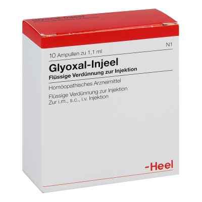 Glyoxal Injeel Ampullen  bei apo-discounter.de bestellen
