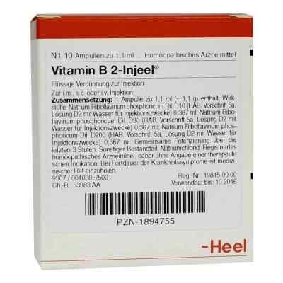 Vitamin B2 Injeel Ampullen  bei apo-discounter.de bestellen