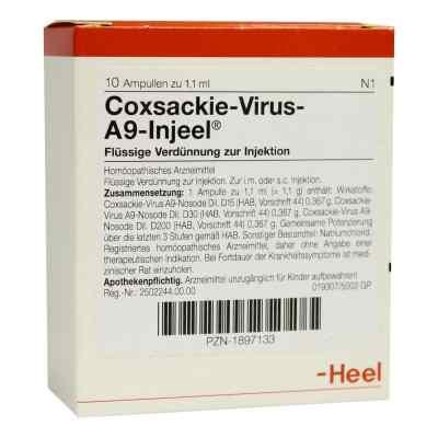 Coxsackie-virus A9 Injeel Ampullen  bei apo-discounter.de bestellen