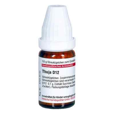 Thuja D 12 Globuli  bei apo-discounter.de bestellen