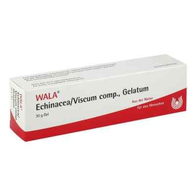 Echinacea/viscum compositus  Gelatum  bei apo-discounter.de bestellen