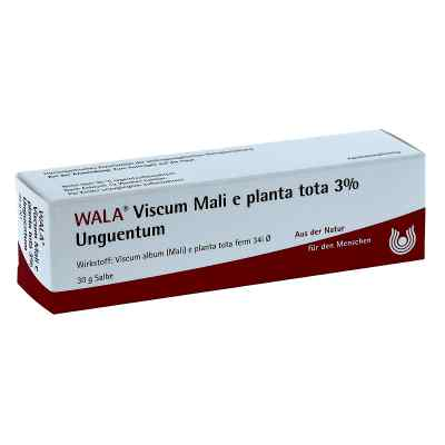 Viscum Mali e planta tota Salbe 3%  bei apo-discounter.de bestellen