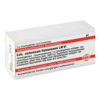 Lm Calcium Carb. Vi Globuli Hahnnemanni  bei apo-discounter.de bestellen