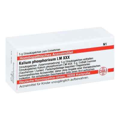 Lm Kalium Phosphoricum Xxx Globuli  bei apo-discounter.de bestellen