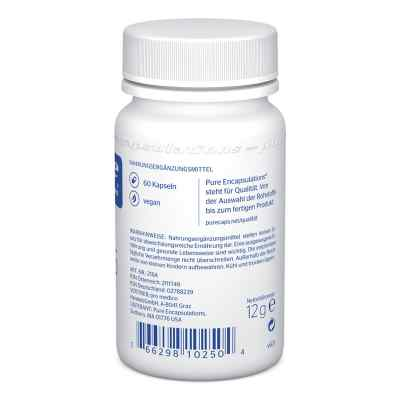 Pure Encapsulations Zink 15 Zinkpicolinat Kapseln  bei apo-discounter.de bestellen