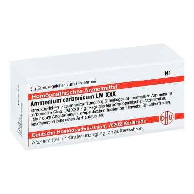 Lm Ammonium Carbonicum Xxx Globuli  bei apo-discounter.de bestellen