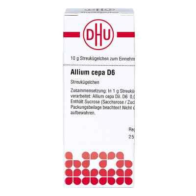 Allium Cepa D6 Globuli  bei apo-discounter.de bestellen