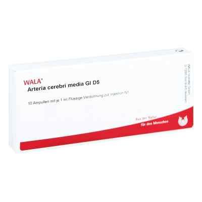 Arteria Cerebri Media Gl D5 Ampullen  bei apo-discounter.de bestellen