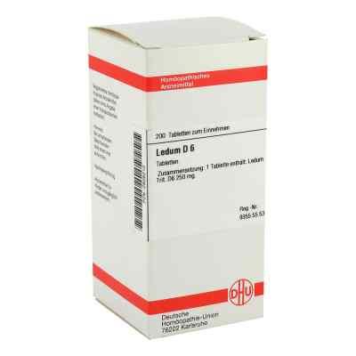 Ledum D6 Tabletten  bei apo-discounter.de bestellen