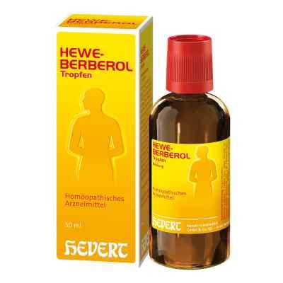 Heweberberol Tropfen 50 ml von Hevert Arzneimittel GmbH & Co. K PZN 03025851