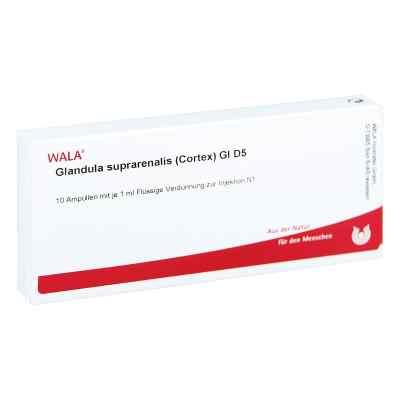 Glandula Supraren. Cort. Gl D5 Ampullen  bei apo-discounter.de bestellen