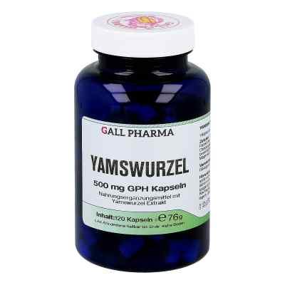 Yamswurzel 500 mg Gph Kapseln  bei apo-discounter.de bestellen