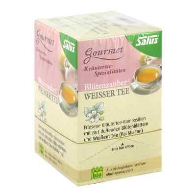 Weisser Tee Blütenzauber Bio Salus Filterbeutel  bei apo-discounter.de bestellen