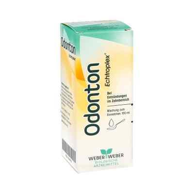 Odonton Echtroplex Tropfen zum Einnehmen  bei apo-discounter.de bestellen