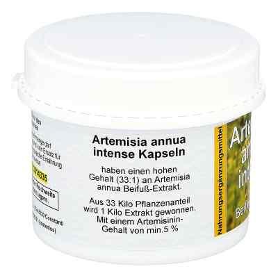 Artemisia Annua Beifuss Kapseln  bei apo-discounter.de bestellen