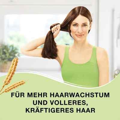 Priorin Kapseln bei Haarausfall  bei apo-discounter.de bestellen
