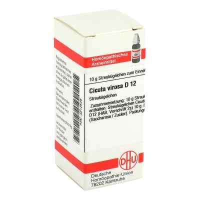 Cicuta Virosa D 12 Globuli  bei apo-discounter.de bestellen