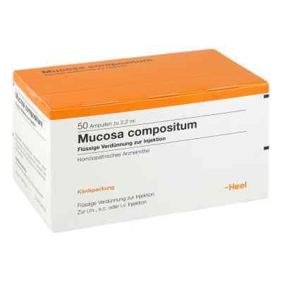 Mucosa Compositum Ampullen  bei apo-discounter.de bestellen