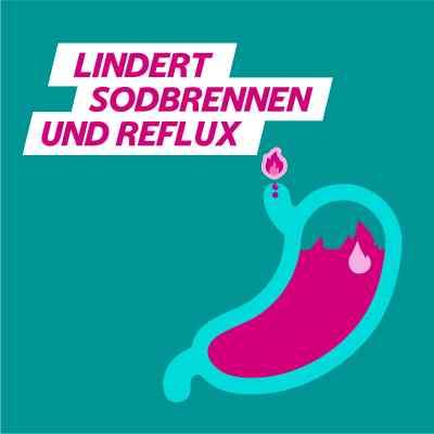 Gaviscon Dual 250mg/106,5mg/187,5mg Kautabletten  bei apo-discounter.de bestellen