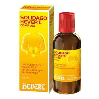 Solidago Hevert Complex Tropfen  bei apo-discounter.de bestellen