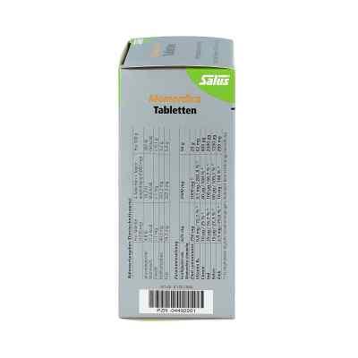 Momordica Diabetiker Tabletten mit Zimt Tabletten  bei apo-discounter.de bestellen
