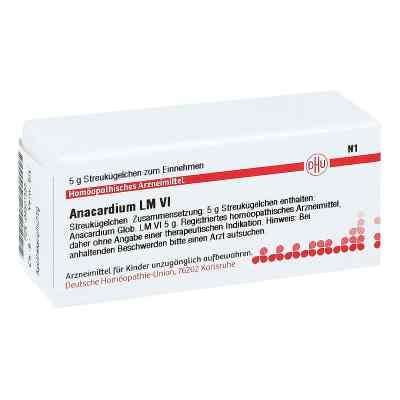 Lm Anacardium Vi Globuli  bei apo-discounter.de bestellen