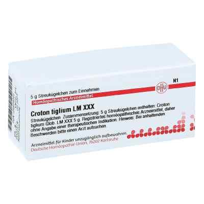 Lm Croton Tiglium Xxx Globuli  bei apo-discounter.de bestellen
