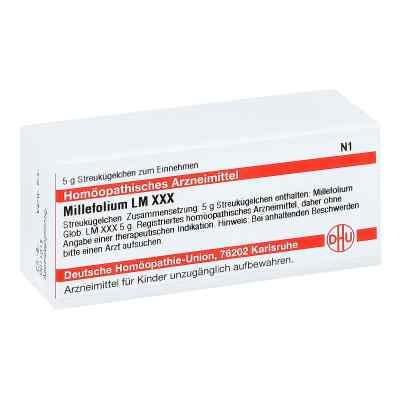 Lm Millefolium Xxx Globuli  bei apo-discounter.de bestellen