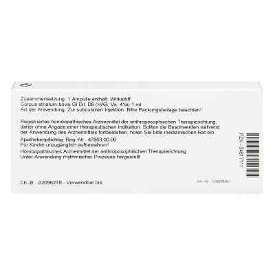 Corpus Striatum Gl D8 Ampullen  bei apo-discounter.de bestellen