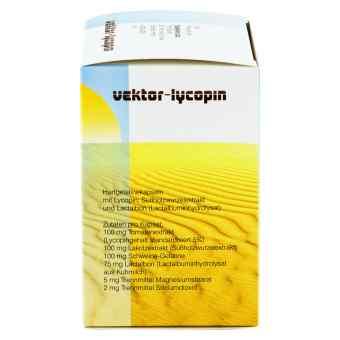 Vektor Lycopin Kapseln  bei apo-discounter.de bestellen