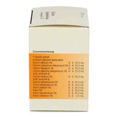 Synergon 21 Calcium phos. Tabletten  bei apo-discounter.de bestellen