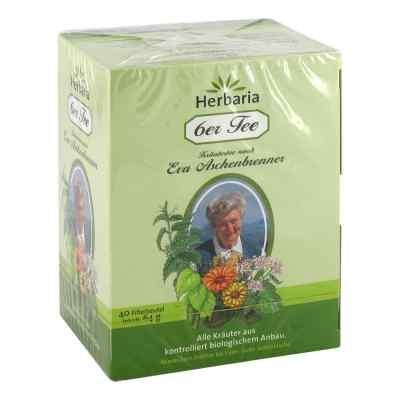 6er Tee nach Eva Aschenbrenner Filterbeutel  bei apo-discounter.de bestellen