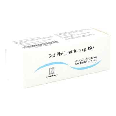 Jso Jkh Brustmittel Br 2 Phellandrium cp Globuli  bei apo-discounter.de bestellen