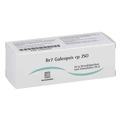 Jso Jkh Brustmittel Br 7 Galeopsis cp Globuli  bei apo-discounter.de bestellen