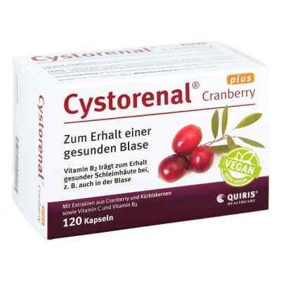 Cystorenal Cranberry plus Kapseln  bei apo-discounter.de bestellen