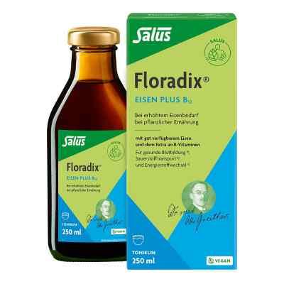Floradix Eisen plus B12 vegan Tonikum  bei apo-discounter.de bestellen