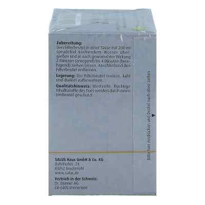 Darjeeling Schwarzer Tee Bio Salus Filterbeutel  bei apo-discounter.de bestellen