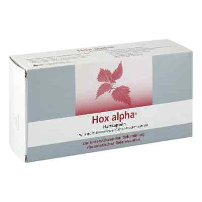 Hox alpha  bei apo-discounter.de bestellen