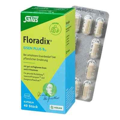 Floradix Eisen plus B12 vegan Kapseln  bei apo-discounter.de bestellen