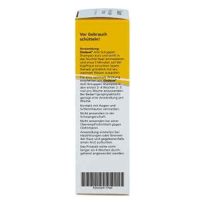 Cloderm Anti Schuppen Shampoo  bei apo-discounter.de bestellen