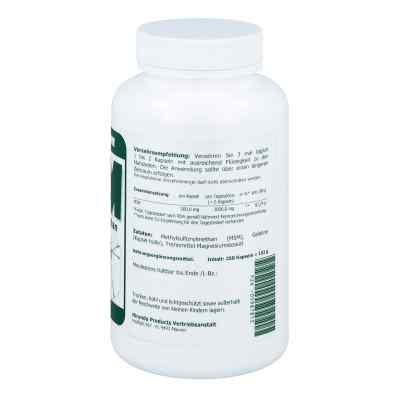 Msm 500 mg Methylsulfonylmethan Kapseln  bei apo-discounter.de bestellen