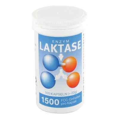 Laktase 1500 Fcc Enzym Kapseln  bei apo-discounter.de bestellen